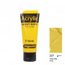 Bigpoint Akrilik Boya 75 ml Yellow Mid 227